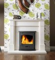 Gallery Tiger Inset Multifuel Stove